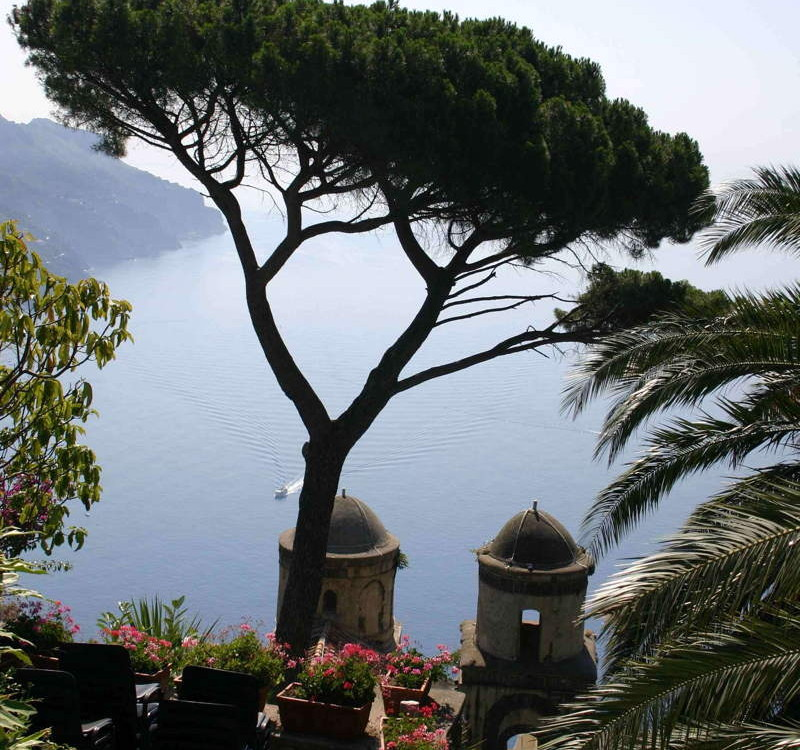 ravello Fanous tree