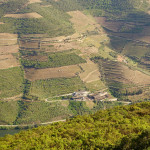 Douro Valley hillside