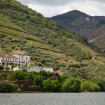 Douro Valley port vineyards from river