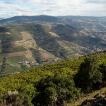 Douro Valley Douro Exclusive tour