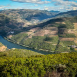 Douro Valley river view