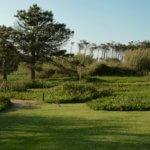Areias do Seixo grounds