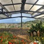 Areias do Seixo greenhouse interior