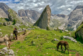 TWO GREAT HIKES IN VAL GARDENA IN THE ITALIAN DOLOMITES