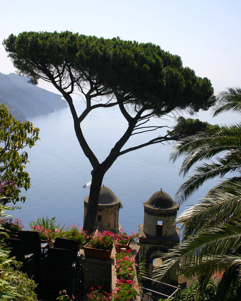 Ravello Il Rufolo tree view