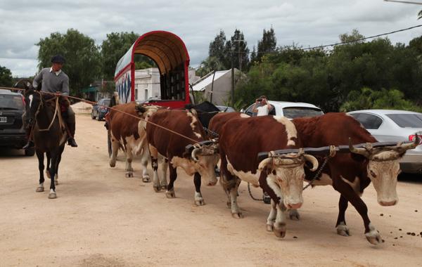 Garzon Uruguay Carnival gaucho parade