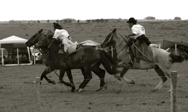 Garzon Carnival horses