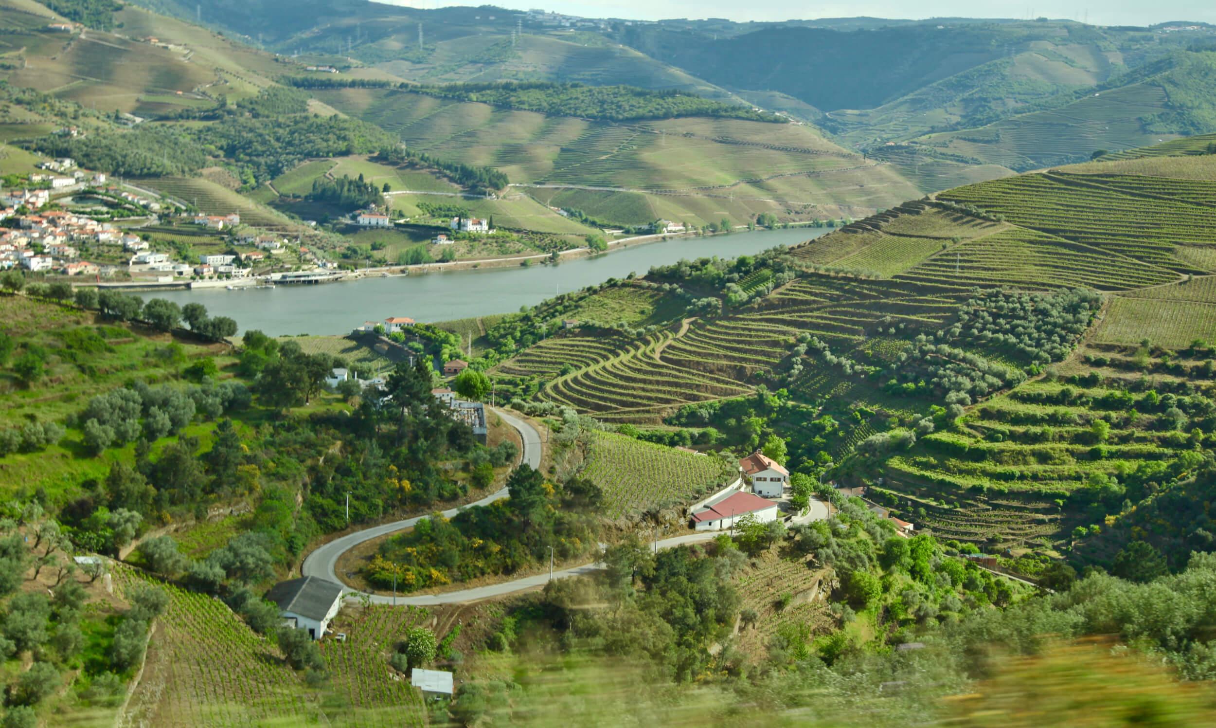 Douro Valley hilltop quinta
