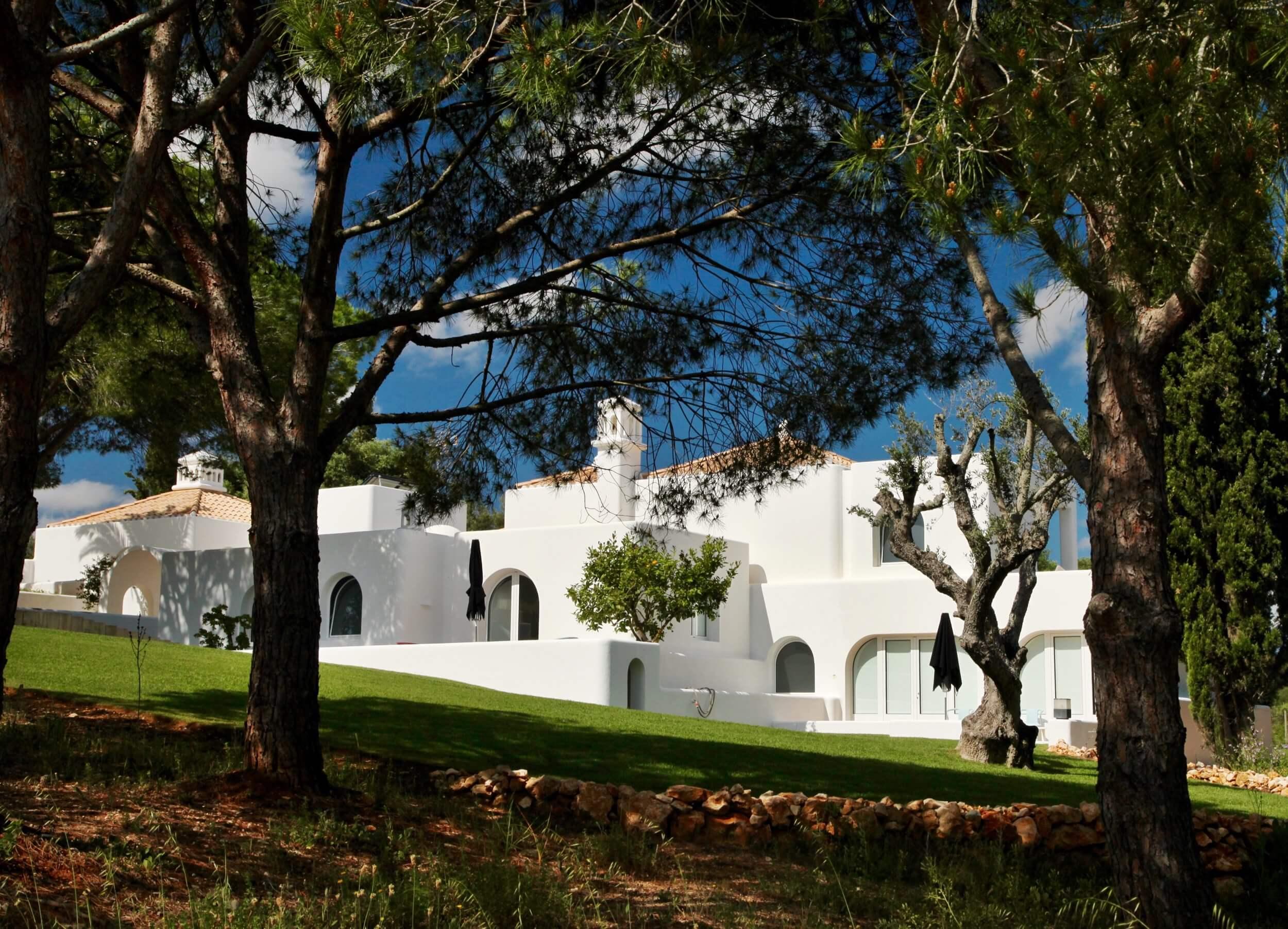 Casa Arte in the trees