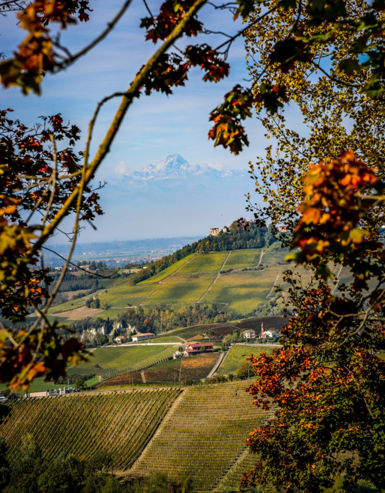 Alps view from Monforte d'Alba
