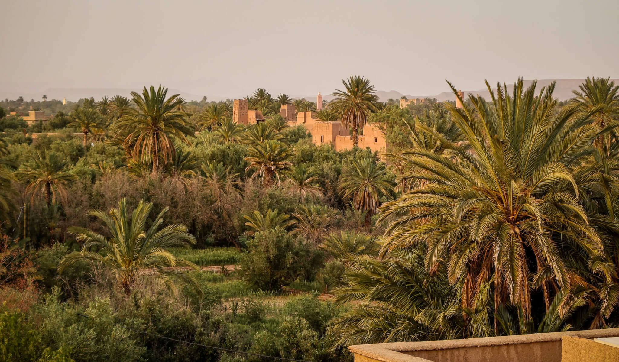 Skoura Kasbahs in palm grove