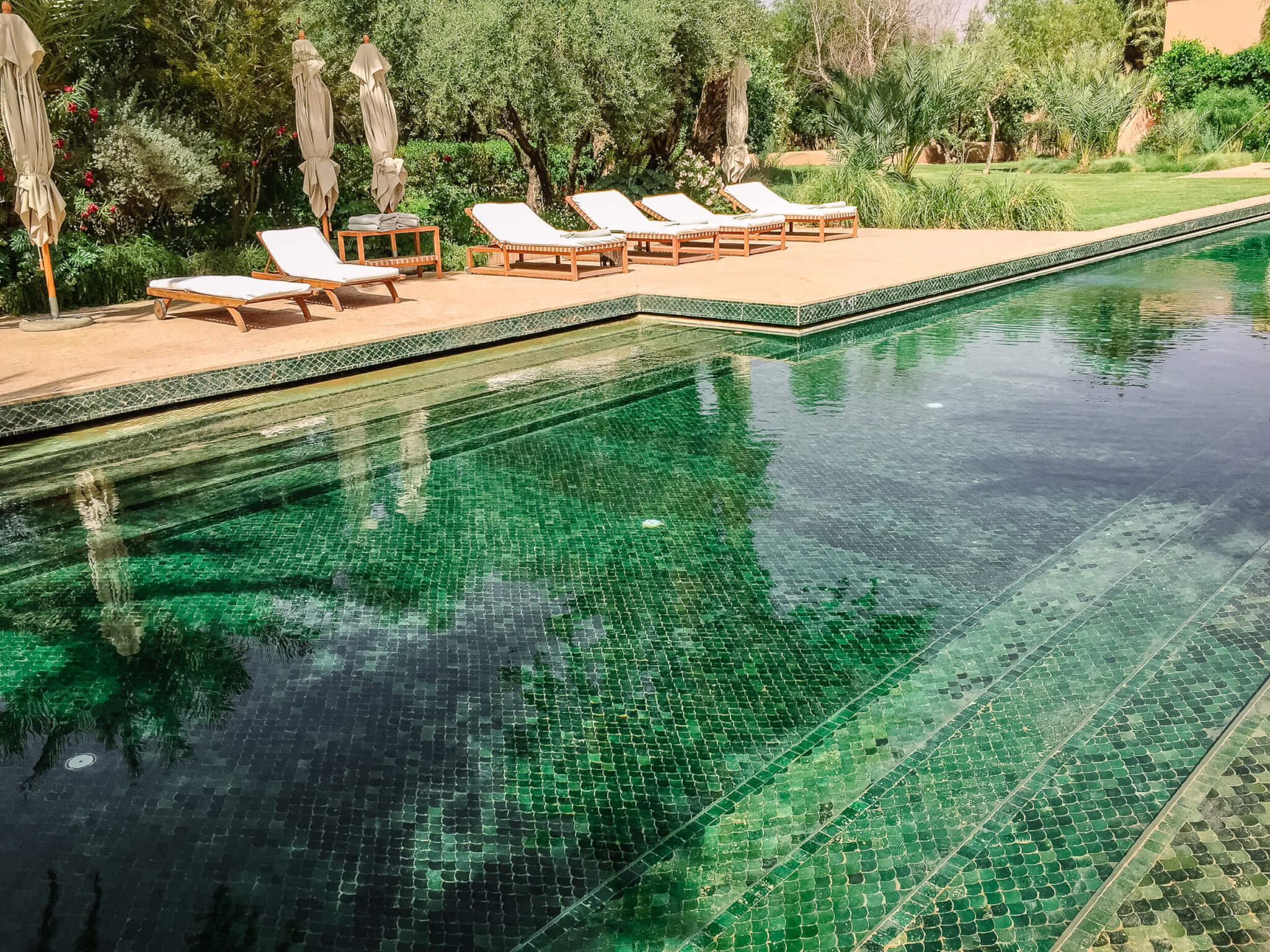 Dar Ahlam best pool in southern Morocco