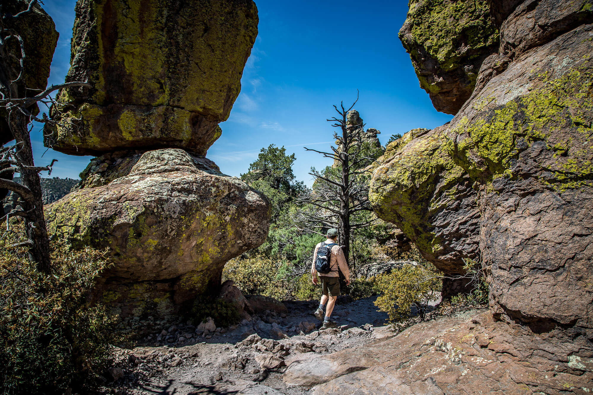 Trail in Chiricahua National Monument