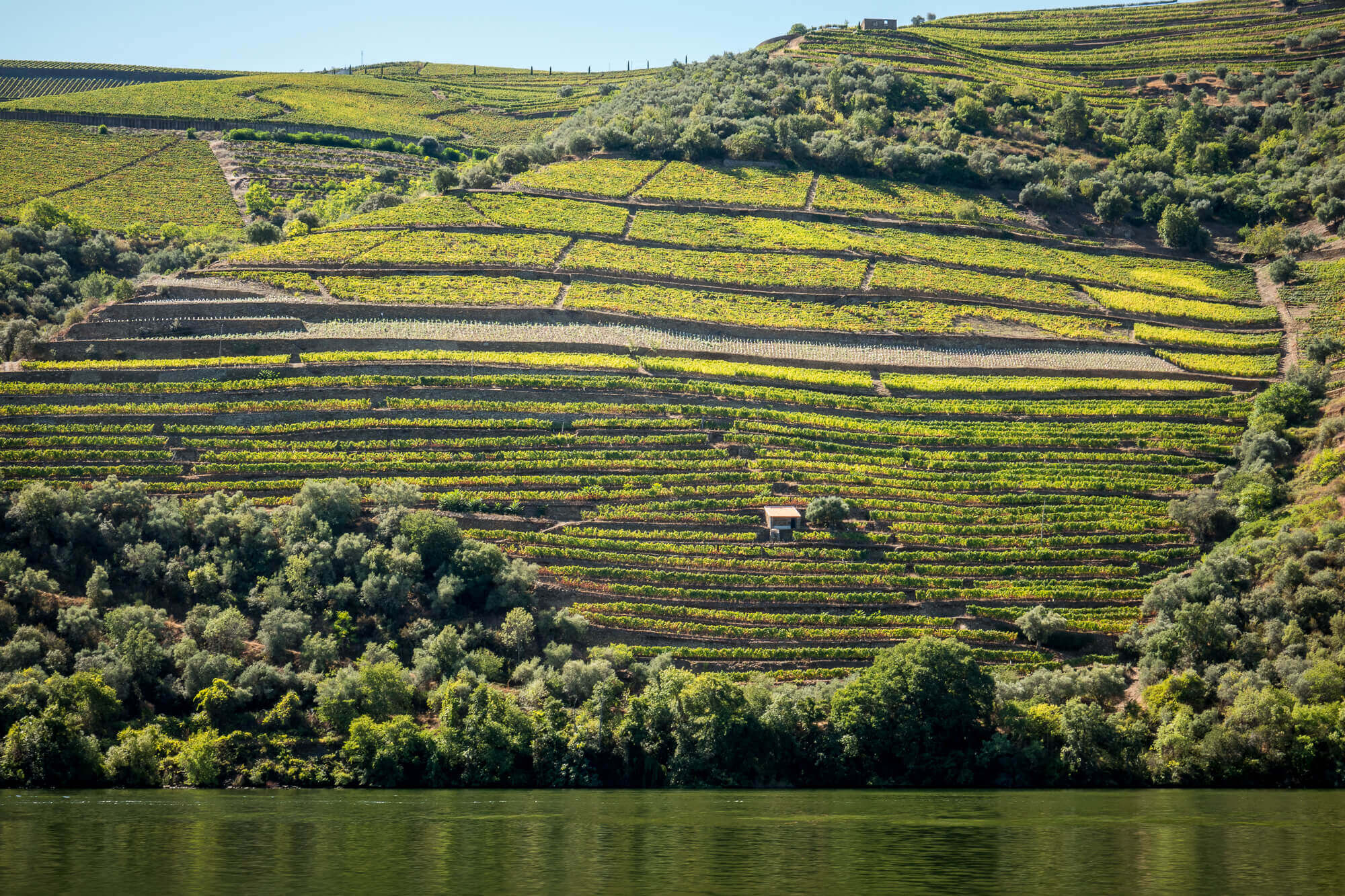 Douro Exclusive boat tour view