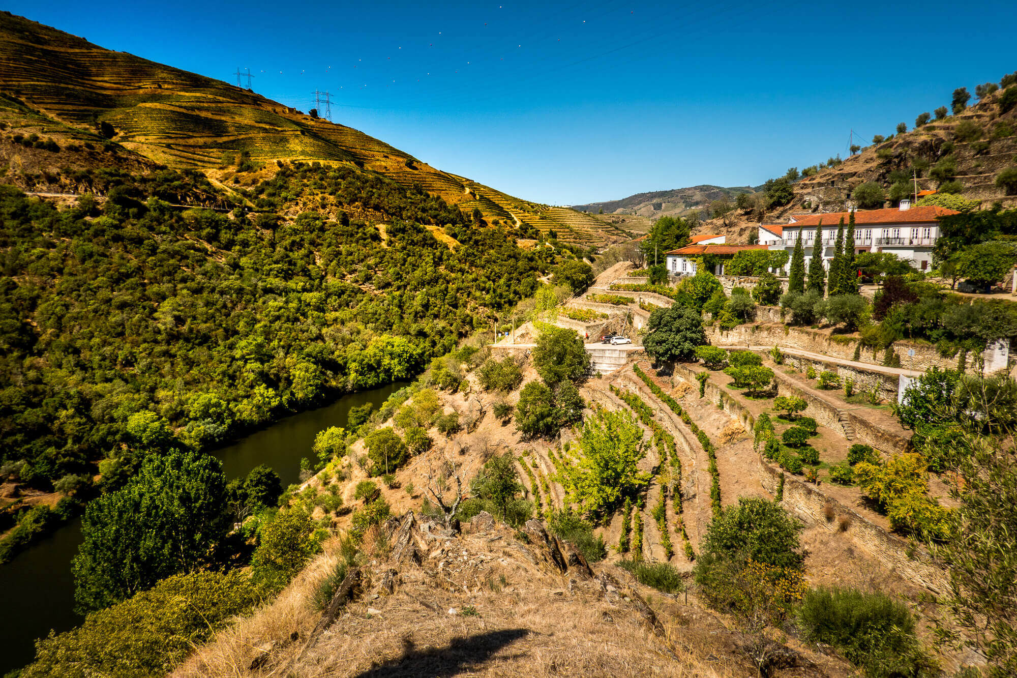 Quinta do Panascal Douro Exclusive tasting