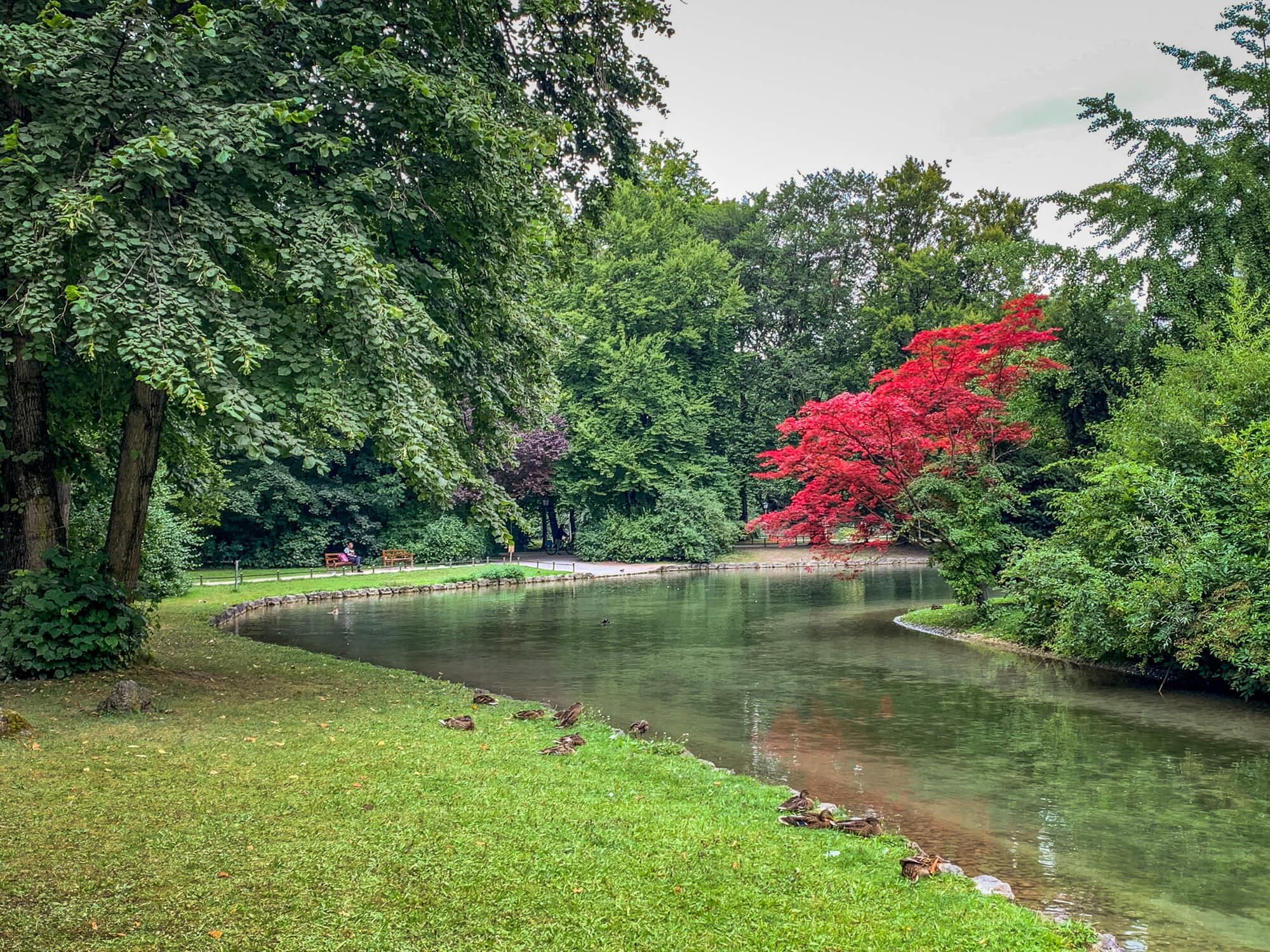 Englischer Garten Munich pond colors