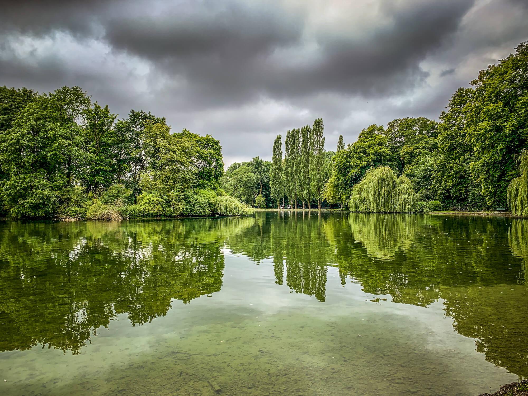 Englischer Garten Munich green textures