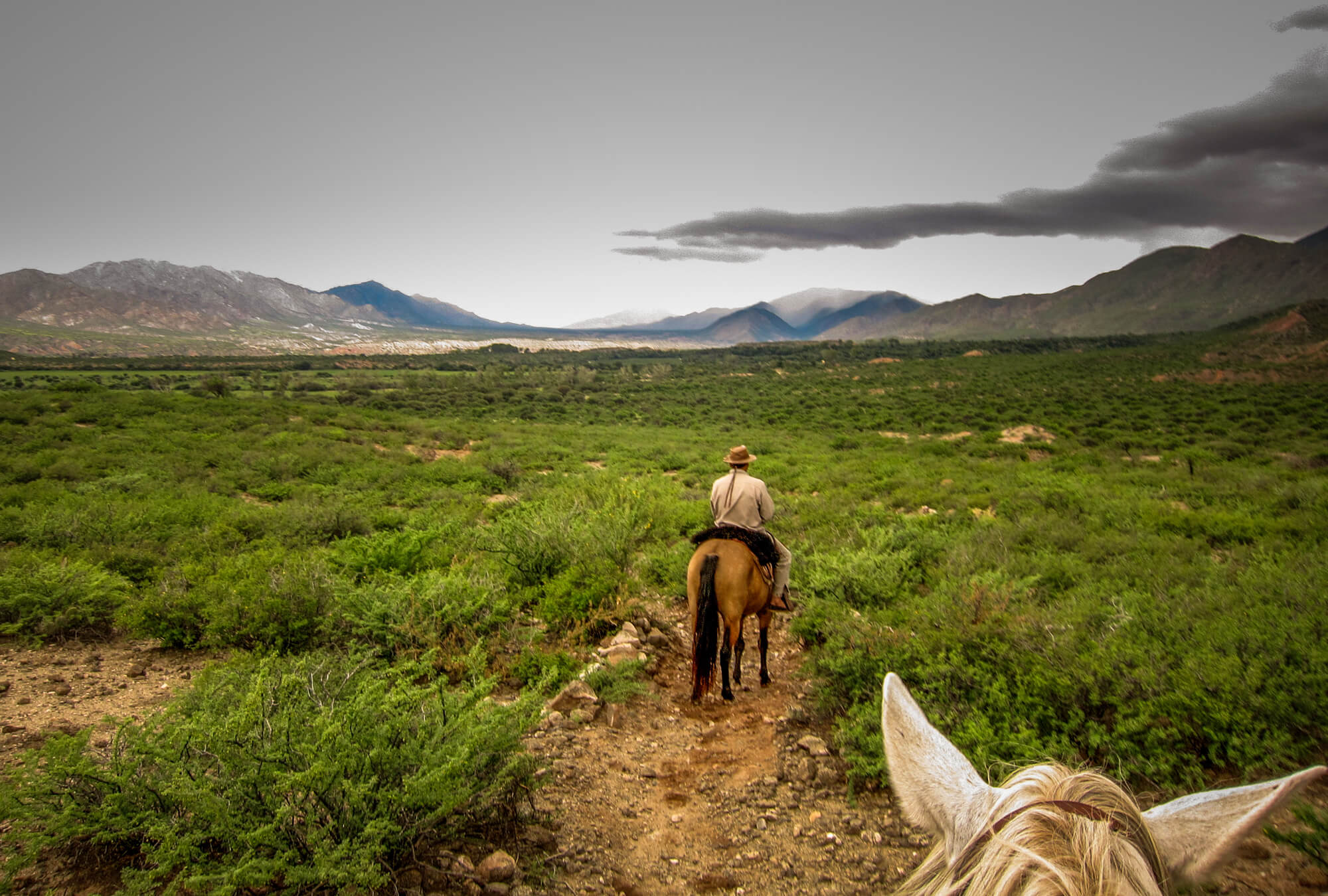 Estancia Colomé horseback riding